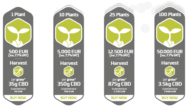 What Is CannerGrow? - Pricing