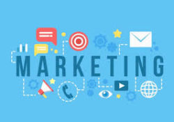 Importance Of Marketing In Business Success