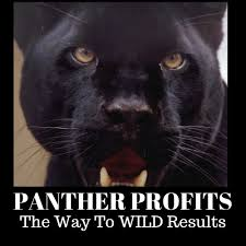 Panther Profits Review