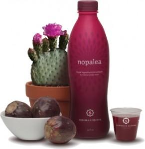 Nopalea - Trivita Flagship Product