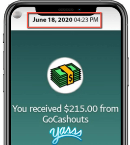 What Is GoCashouts? - Fake Income Proof 2