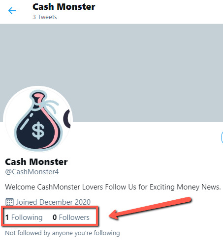 What Is Cash Monster? - Twitter Followers