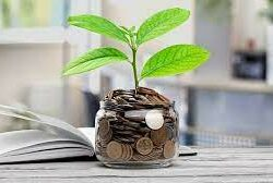 5 Smart Ways To Invest Your Small Business Earnings