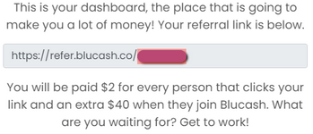 Blucash.co Review - Welcome Message